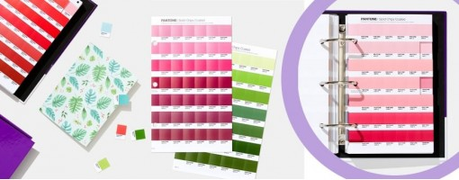 Pantone Solid Uncoated | Pantone Uncoated Graphic Color Shades
