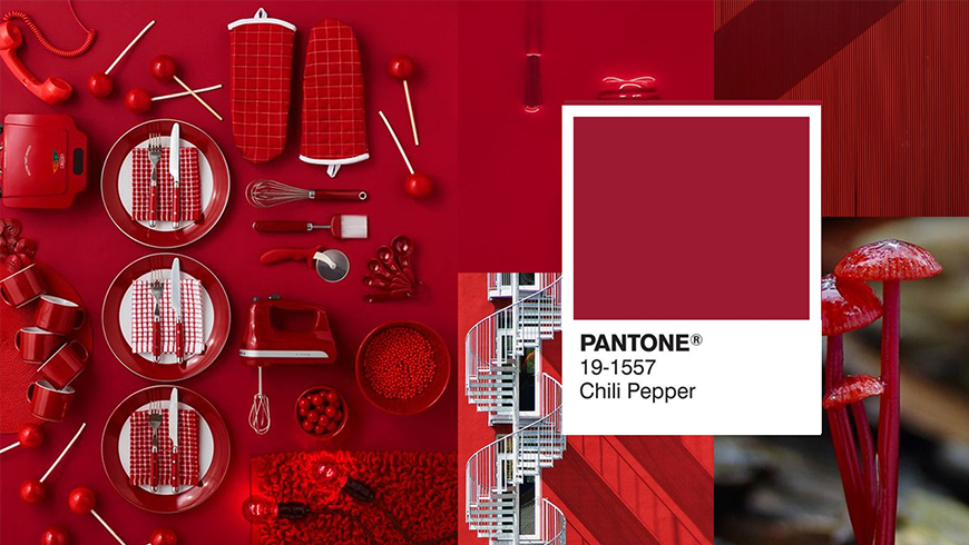 Pantone Color of the Year 2007, Chili Pepper 19-1557