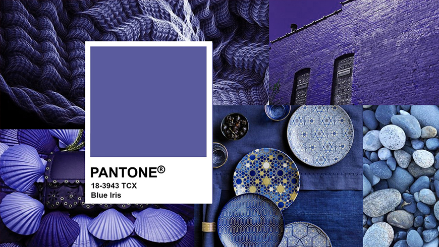 Pantone Color of the year 2008, Blue Iris 18-3943