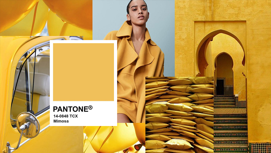 Pantone Color of the Year 2009, Pantone Mimosa 14-0848