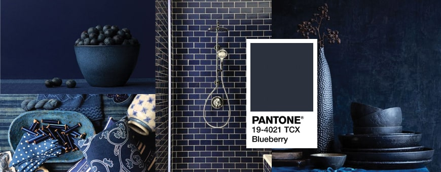 Pantone Blueberry Blue Shades
